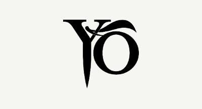 propromotion_yo_logo